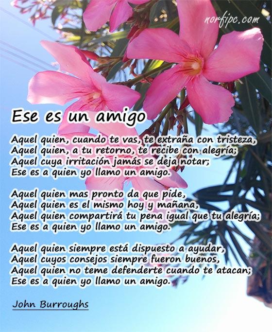 poemas para un amigo