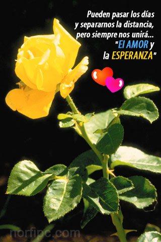 Imagen de amor para el celular: Siempre nos unirá El AMOR y la ESPERANZA