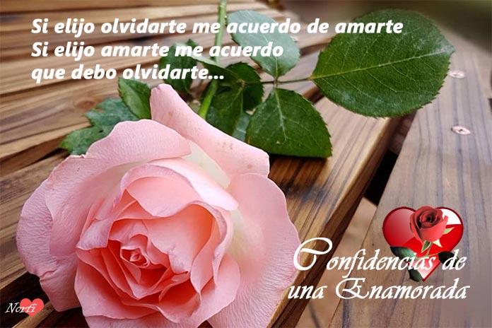 FRASES, PENSAMIENTOS,REFLEXIONES... - Página 39 Confidencias-de-una-mujer-enamorada