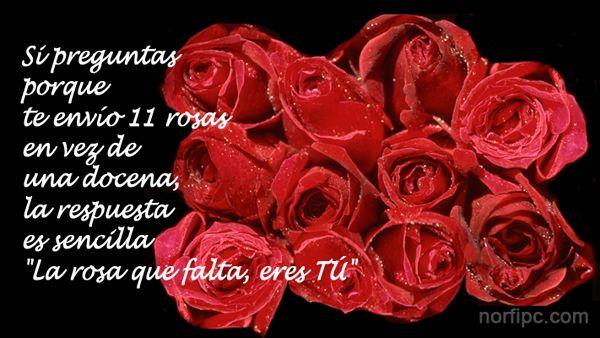 11-rosas.jpeg