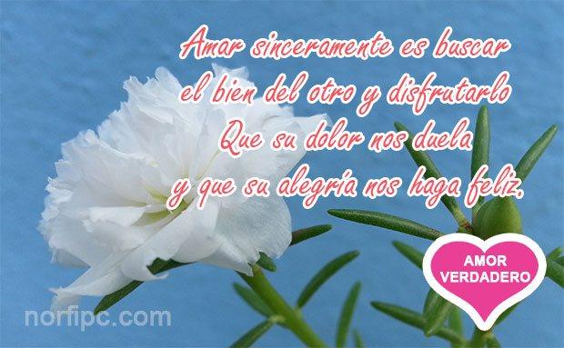 Frases Para Explicarle Mi Amor Verdadero Bueno Y Sincero