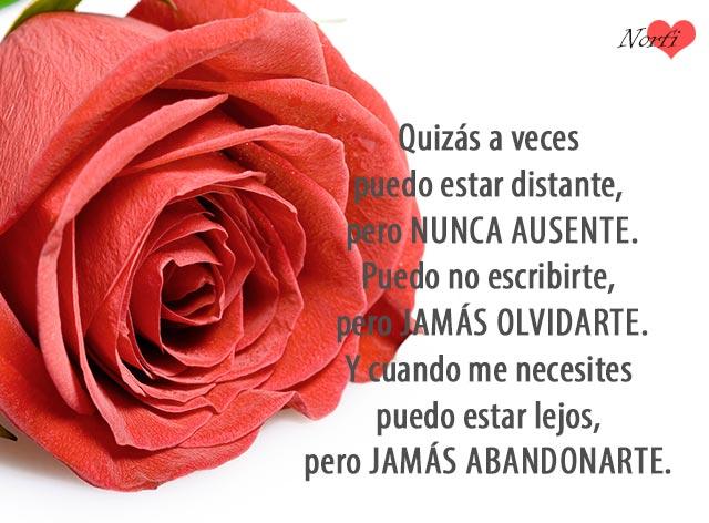 Frases De Amor Que Cuentan Y Hablan De Sentimientos Profundos