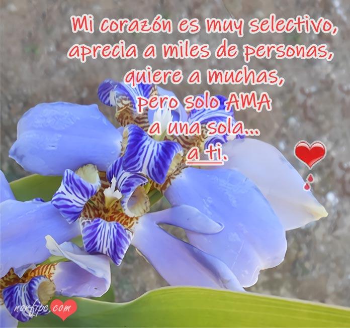Frases De Amor Que Me Recuerdan A Ti Y Hacen Que Te Extrañe
