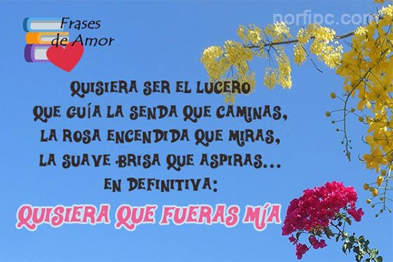 Frases De Un Amor Incondicional Platonico Y Espiritual