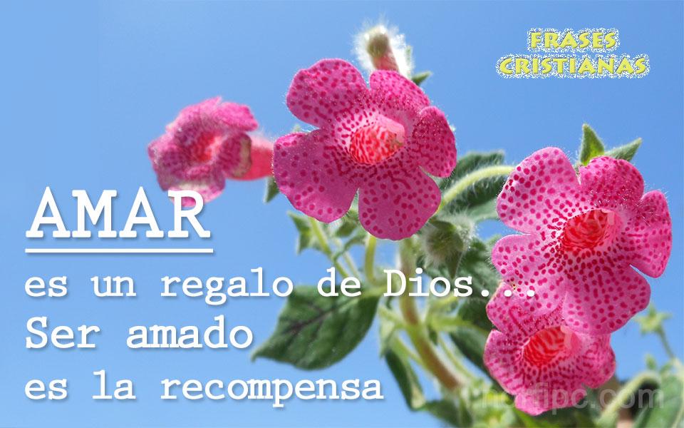 Fotos Con Frases Del Amor A Cristo Y A Nuestros Hermanos