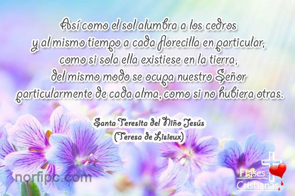 Frases Y Meditaciones Cristianas De Santa Teresita Del Niño Jesús