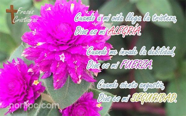 Frases Cristianas De Amor A Dios Para Mis Hijos Y Familia