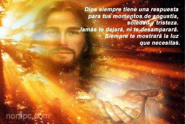 Dios siempre te mostrará la luz que necesitas