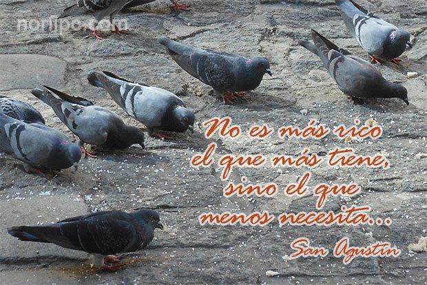 Frases Reflexiones Y Pensamientos Cristianos De San Agustin