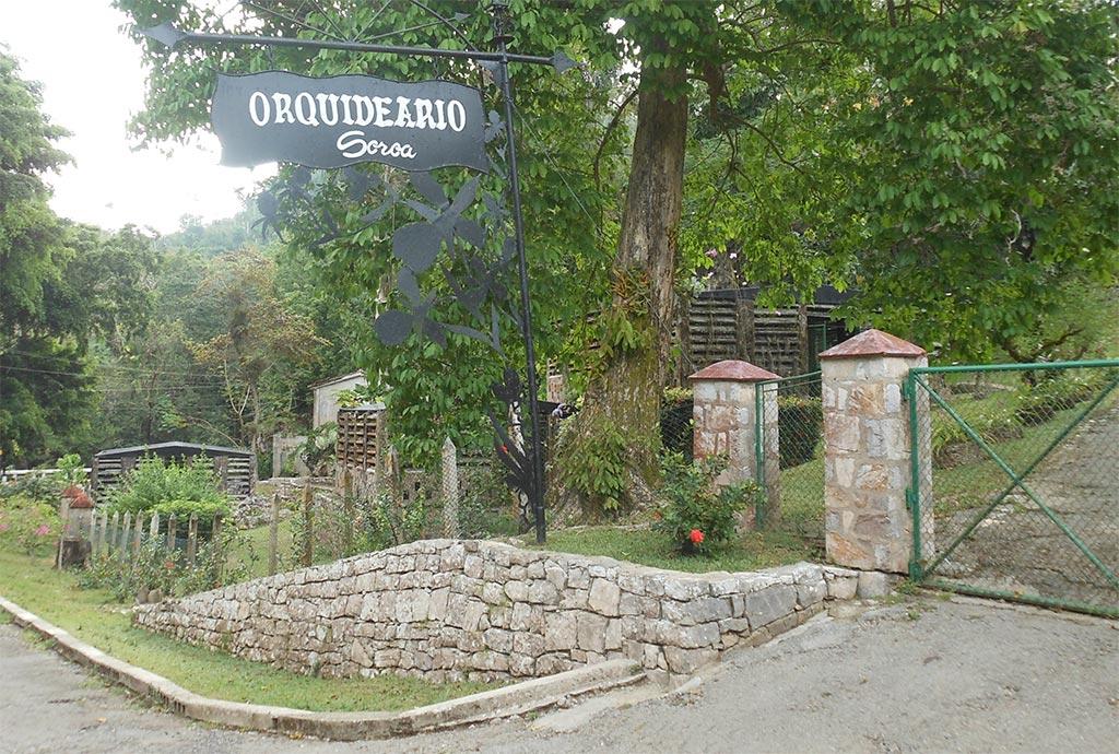 El orquideario de soroa o jard n de las orqu deas de cuba for Como llegar a jardines de la reina cuba