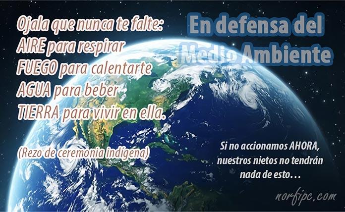 Frases En Defensa Del Medio Ambiente Y La Vida En La Tierra
