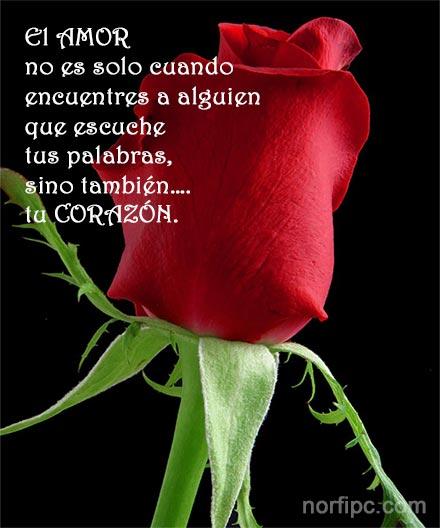 Frases Del Corazon Para Expresar Amor Y Sentimientos En Facebook
