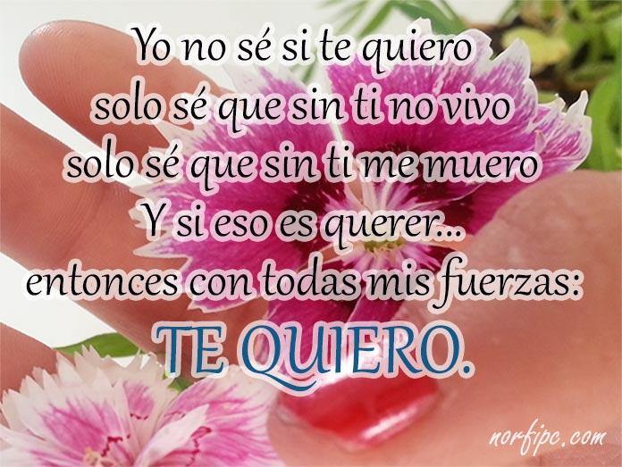 Poemas Y Versos Cortos De Amor Sentimentales Para Facebook