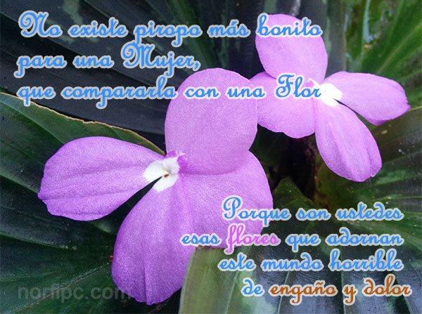 Mensajes Cursis De Amor Y Palabras Sinceras Del Alma
