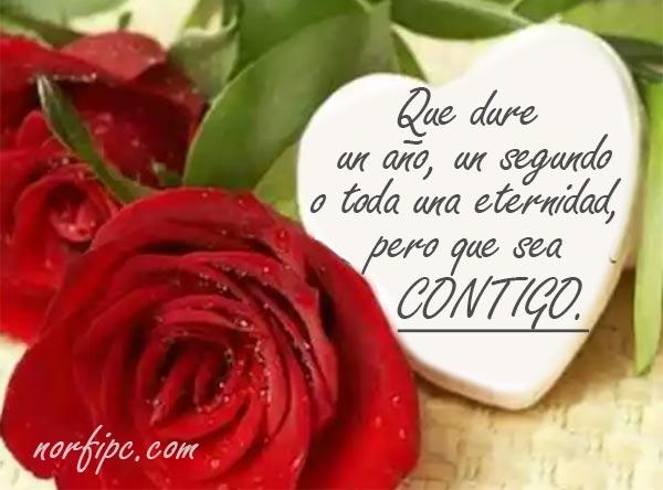 10 Formas De Decir Te Quiero Y Te Amo Sin Confesarlo