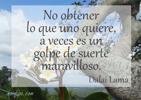 Dalai Lama Sus Citas Frases Y Pensamientos Mas Famosos