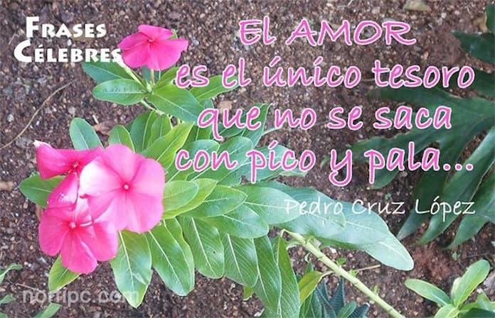 Frases De Amor Con Imagenes De Naturaleza: Imágenes Con Frases Célebres Y Ciertas Sobre El Amor