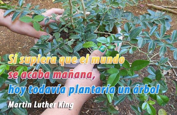 Pensamiento optimista de la vida de Martin Luther King