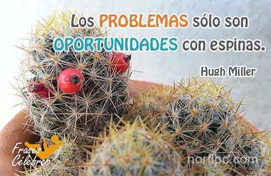 Frases c lebres del ayer para reflexionar hoy for Informacion sobre el cactus