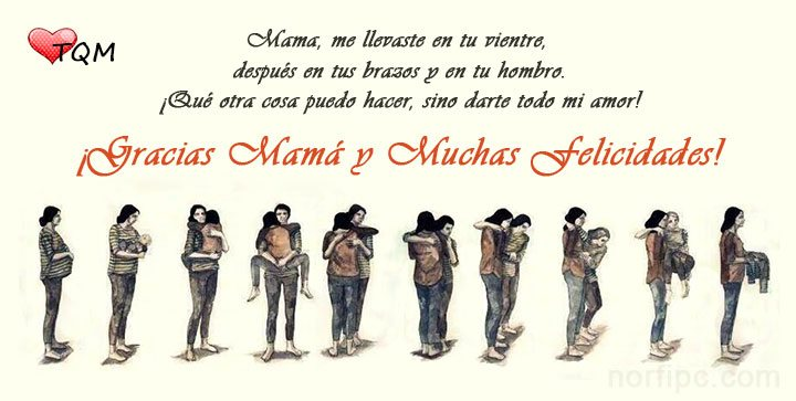 Gracias Madre Poemas palabras bonitas para dedicar a mi mamá