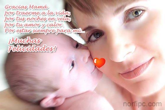 Versos Para El DIA De Las Madres