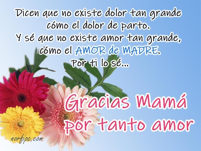 Gracias Mamá Dedicatorias Para Felicitar El Día De La Madre