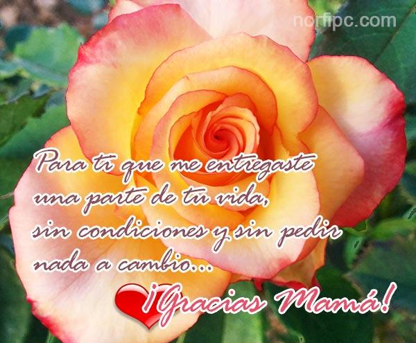 Frases Y Poemas Para Mamá Y Todas Las Madres De Facebook En Su Día