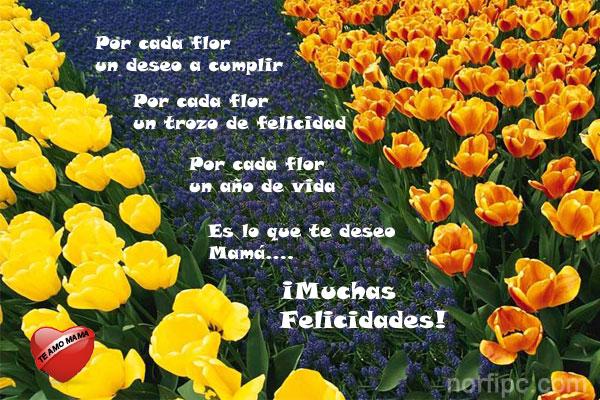 Felicidades en el dia de las madres