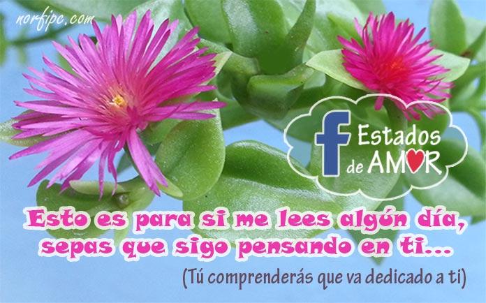 Palabras De Amor Para Actualizar Mi Estado De Facebook