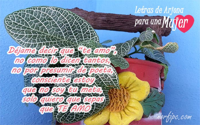Frases Y Letras De Canciones De Arjona Para Dedicar A Una Mujer