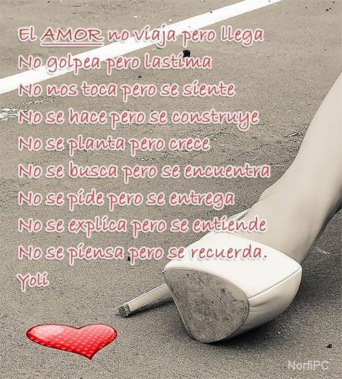 Frases Y Versos Con Opiniones Sobre El Amor Y El Dolor