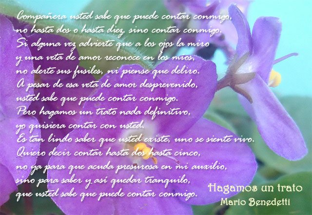Poema de Mario Benedetti, Hagamos un trato