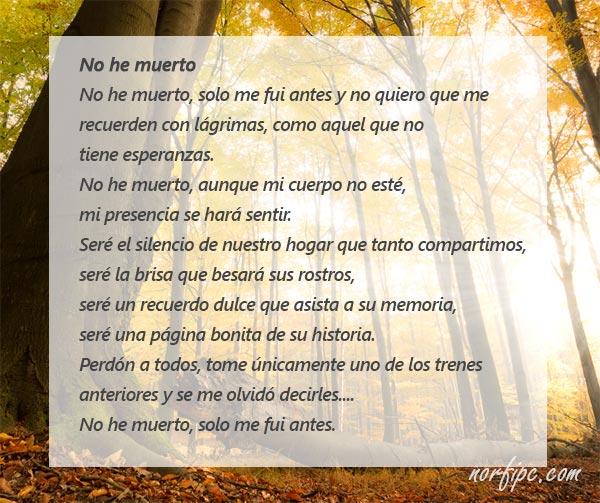 Poemas Para Despedir O Recordar A Un Ser Querido Muerto