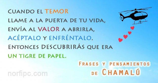 Frases Y Pensamientos De Chamalú