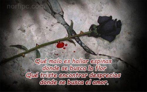 Poemas De Amor Y Tristeza