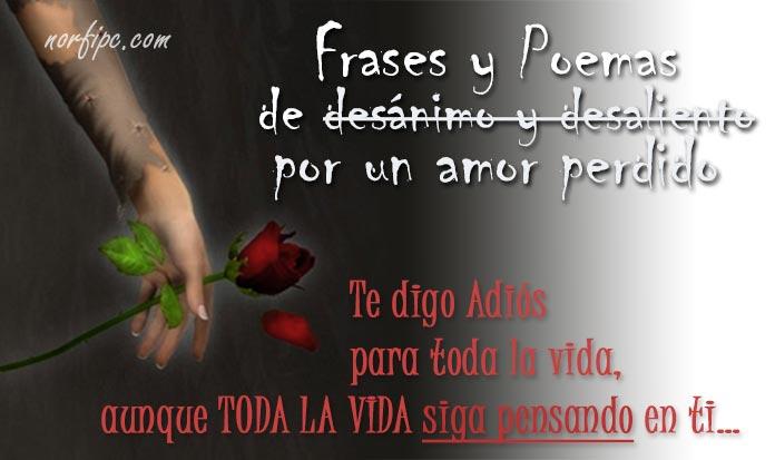 Frases Y Poemas De Desánimo Y Desaliento Por Un Amor Perdido
