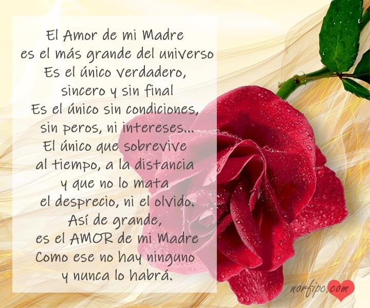 El Amor De Mi Madre Poema Para Agradecer Su Inmenso Amor