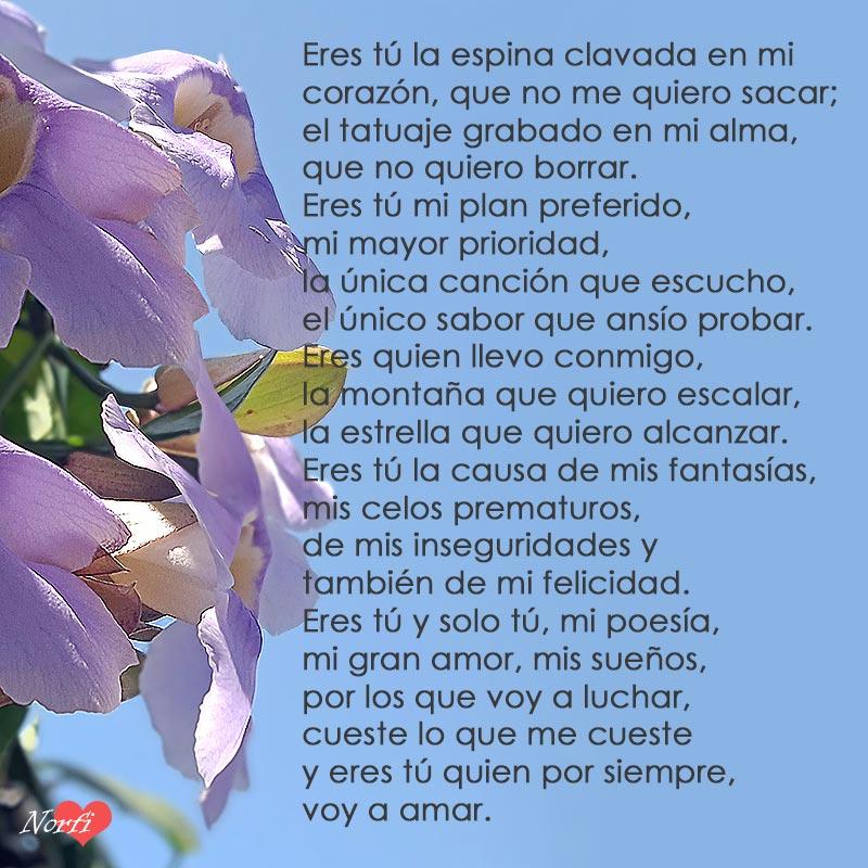 Eres Tú Y Solo Tú Mi Gran Amor Y Mi Felicidad