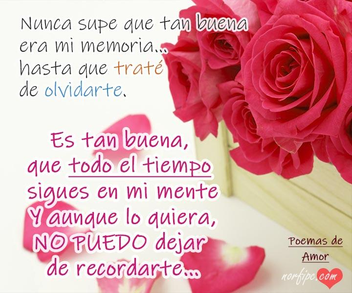 Olvidarte Es Imposible Poemas Para Un Amor Inolvidable