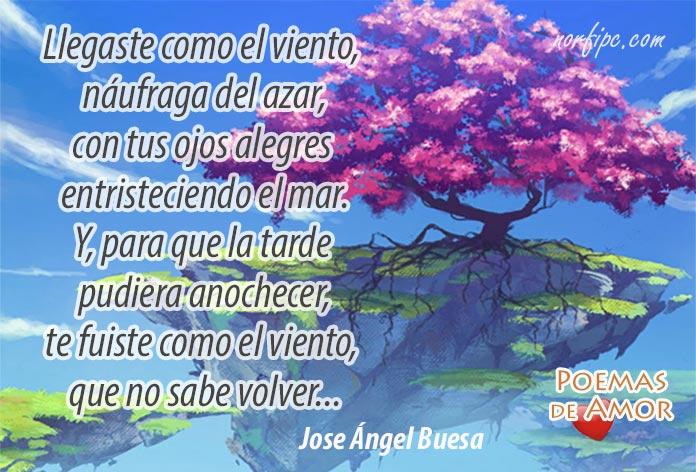 poemas y versos de amor de jose Ángel buesa