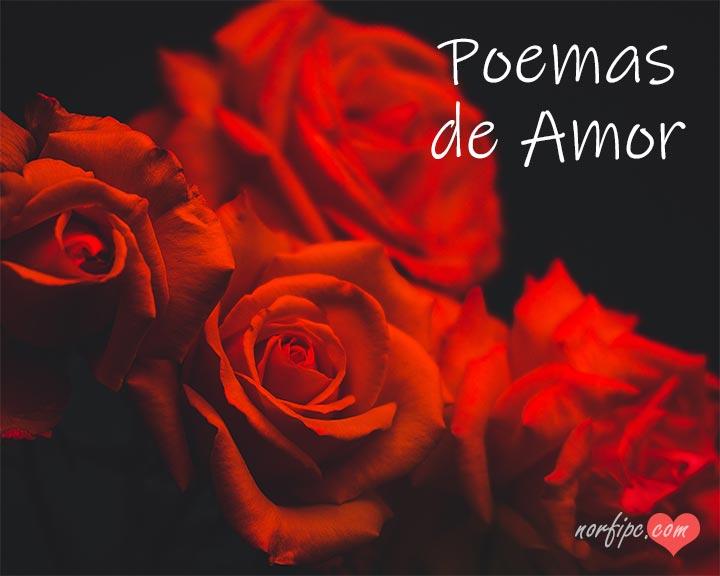 Poemas Y Versos De Amor Para Dedicar De Norfi Carrodeguas