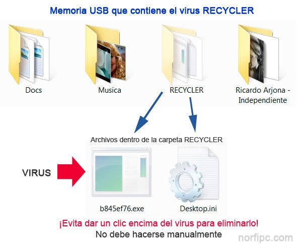 Archivos del virus Recycler en una memoria USB