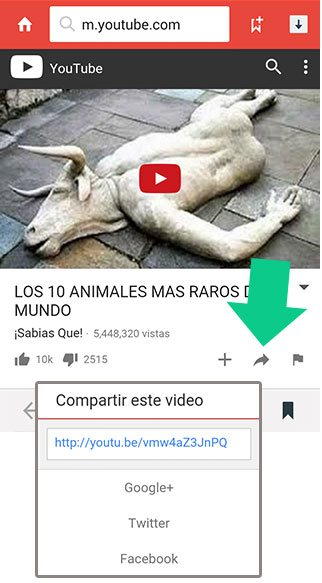 Compartir video en YouTube