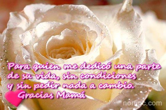 ... , cariño y reconocimiento para dedicar a mamá el Día de las Madres