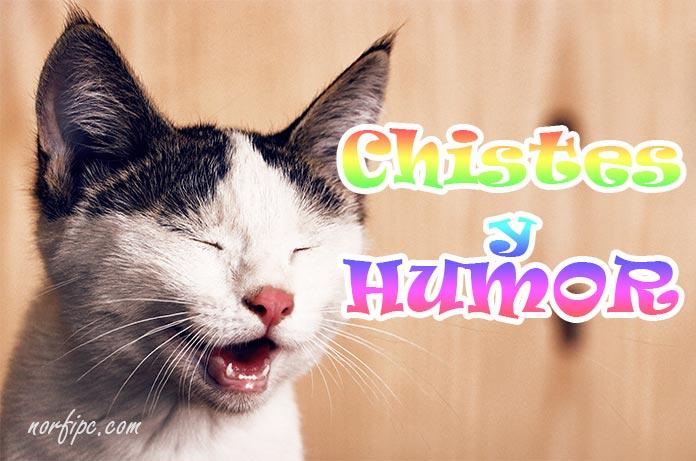 Frases Graciosas Mensajes Ocurrentes Y Alegres De Humor