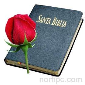 Imágenes adornadas con versos, citas cristianas y de fe en Dios