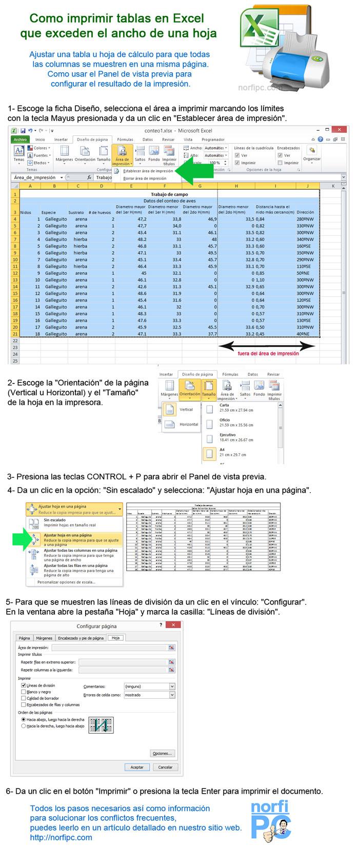 Index of /img/infografia