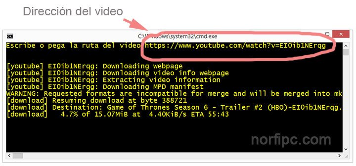 Descargando un video desde YouTube con la aplicación YouTube-dl, usando un archivo batch