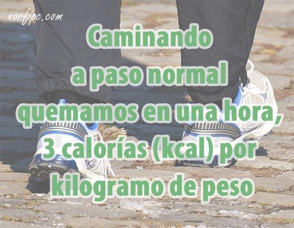 cuantas calorias se queman caminando una hora a paso rapido
