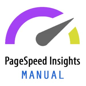 Manual para usar la herramienta PageSpeed Insights de Google